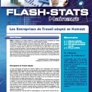 flash-stats-2010-1