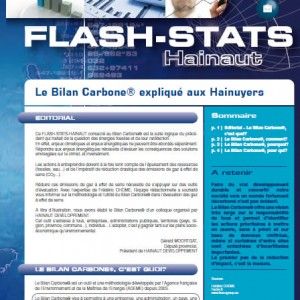 flash-stats-2010-5