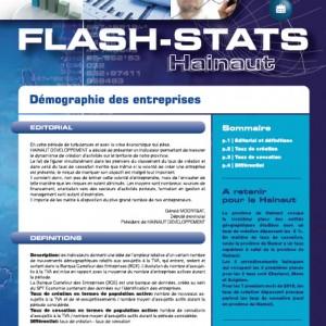 flash-stats-2010-6