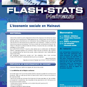 Flash-stats-Hainaut 2011-01