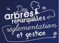 des-arbres-remarquables-reglementation-et-gestion