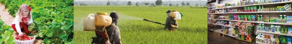Vous voulez contribuer à l'évaluation de la législation européenne sur les produits phytopharmaceutiques et les résidus de pesticides ?