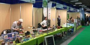 Hainaut Developpement - Agence de Développement de l ...