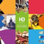 Hainaut Développement Rapport d'activités 2019